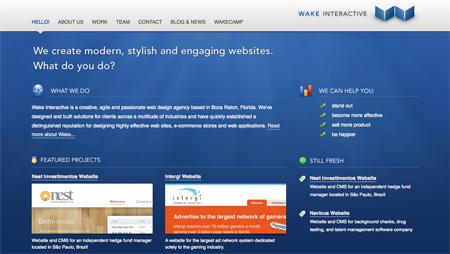 Blue CSS Website Designs 03