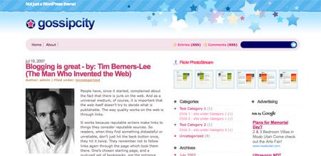 High Quality Free WordPress Themes 14