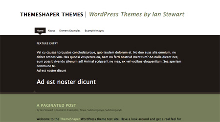 High Quality Free WordPress Themes 20