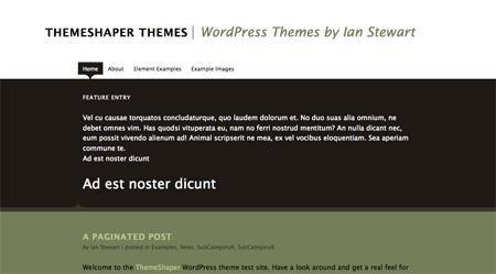 High Quality Free WordPress Themes 20