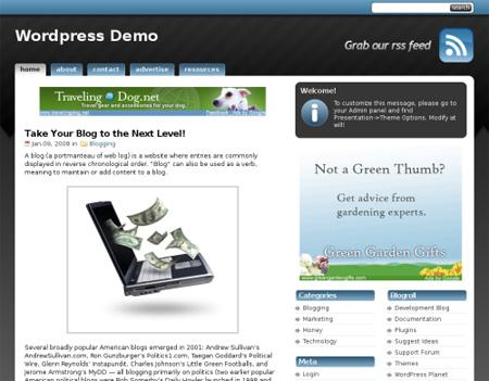 High Quality Free WordPress Themes 13