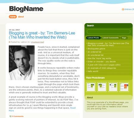 High Quality Free WordPress Themes 18