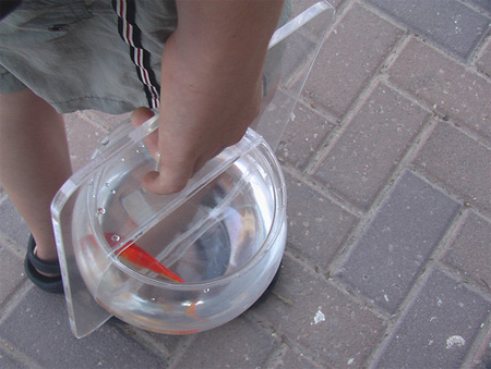 Portable Fishbowl by Michal Shabtiali 6