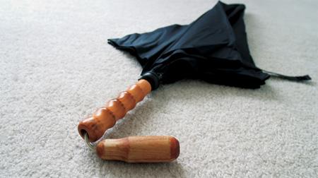Polite Umbrella 3