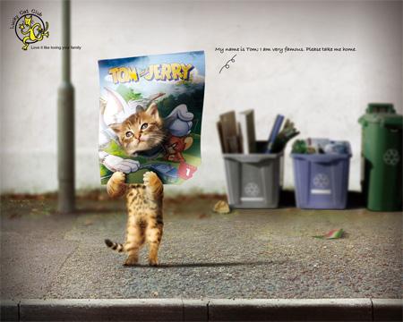 Lucky Cat Club Advertisement