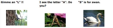Alphabet in Nature