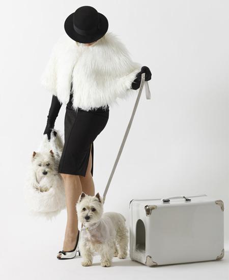 Portable Dog House by Marco Morosini 2