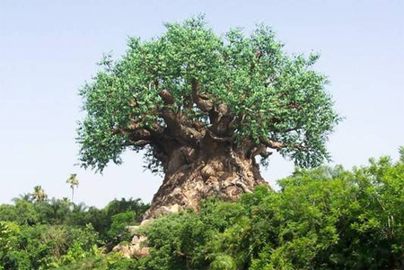 The Tree of Life at Disneys Animal Kingdom Seen On Coolpicturegallery.blogspot.com