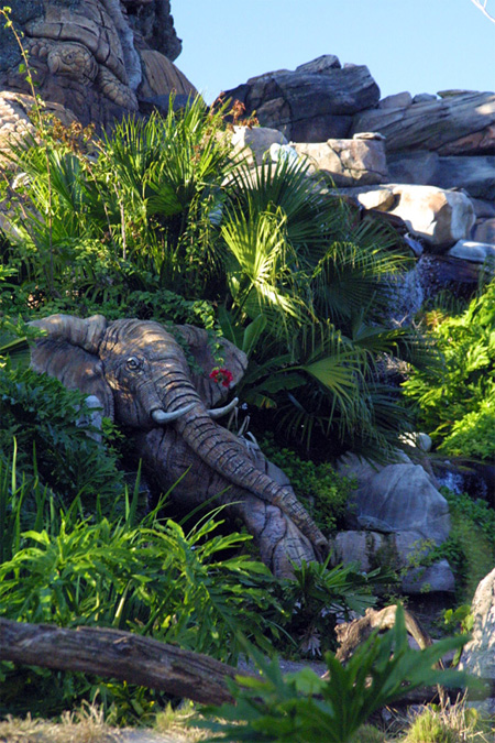 The Tree of Life at Disneys Animal Kingdom 15