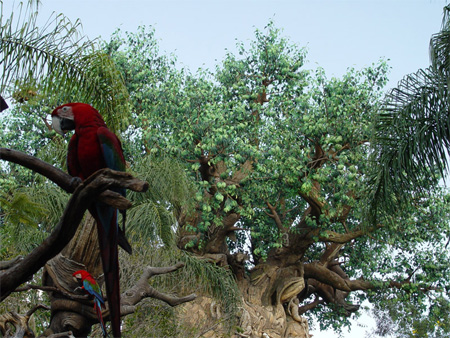 The Tree of Life at Disneys Animal Kingdom 19