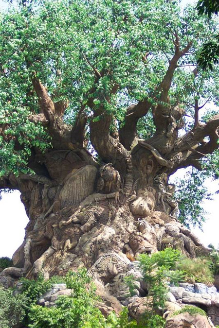 The Tree of Life at Disneys Animal Kingdom Seen On Coolpicturegallery.blogspot.com 3
