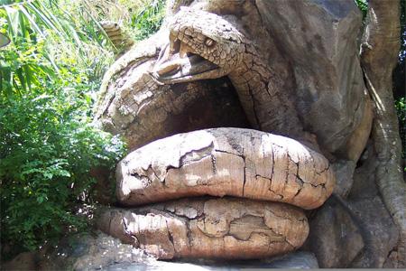 The Tree of Life at Disneys Animal Kingdom 5