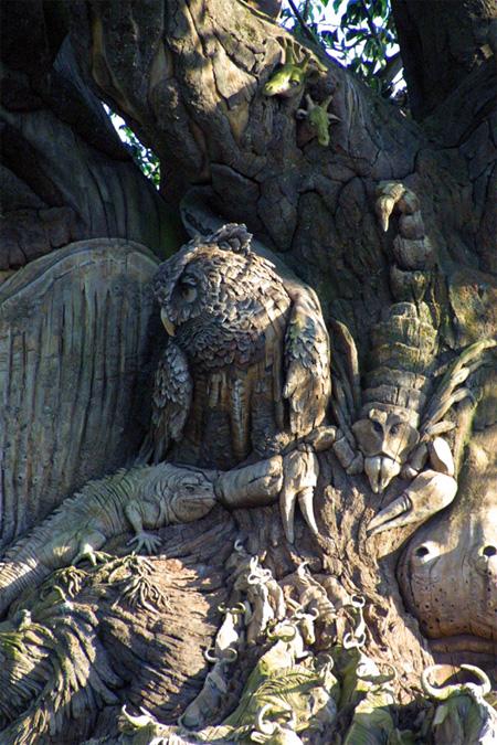 The Tree of Life at Disneys Animal Kingdom 7