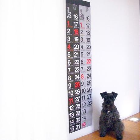 2009 Nava International Wall Calendar 2