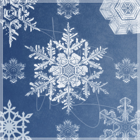Snowflake Photoshop Brushes