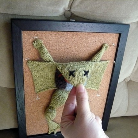 Knitted Frog Dissection 2
