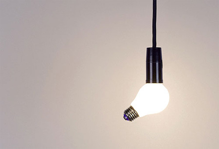 Siamese Light Bulb 3