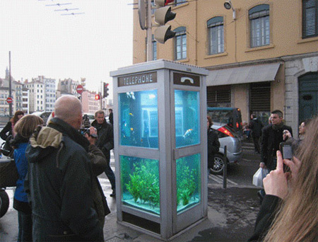 Aquarium Telephone Booth in France 3