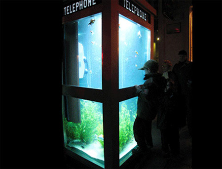 Aquarium Telephone Booth in France 4