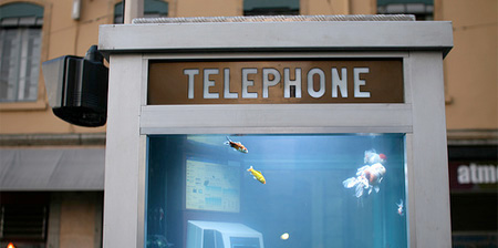 Aquarium Telephone Booth
