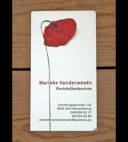 Marieke Vanderweeen Business Card