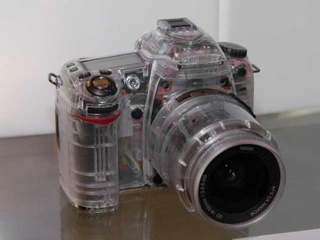 Transparent Nikon D80