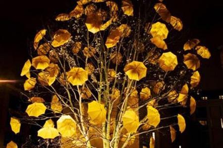 Bloom by Sam Spenser