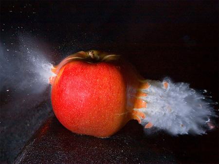 Apple by Jasper Nance