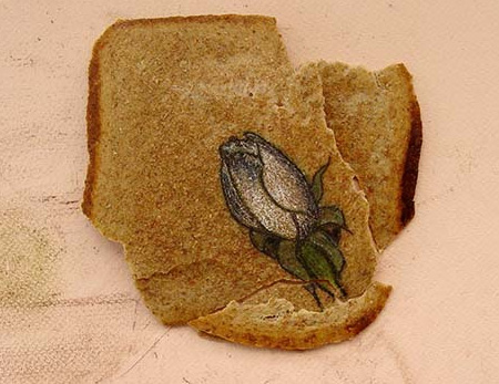 Illustrated Bread by Ximena Escobar 10