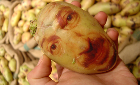 Potato Portraits by Ginou Choueiri