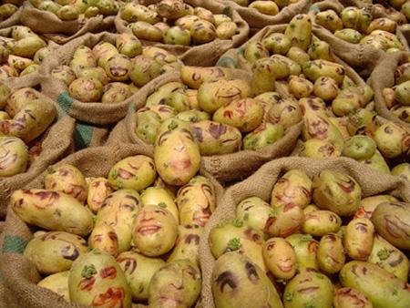 Potato Portraits by Ginou Choueiri 2