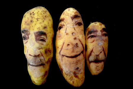 Potato Portraits by Ginou Choueiri 5