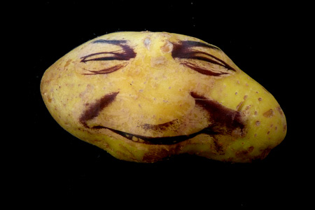 Potato Portraits by Ginou Choueiri 11
