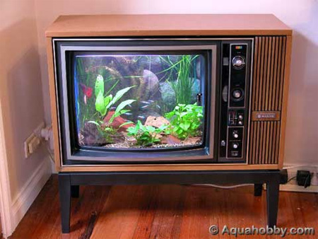 15 unusual and creative aquariums for Aquarium meuble tv