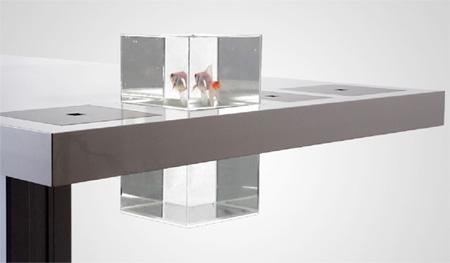 Desk Aquarium
