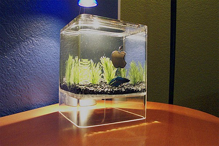 15 unusual and creative aquariums for Acuarios originales
