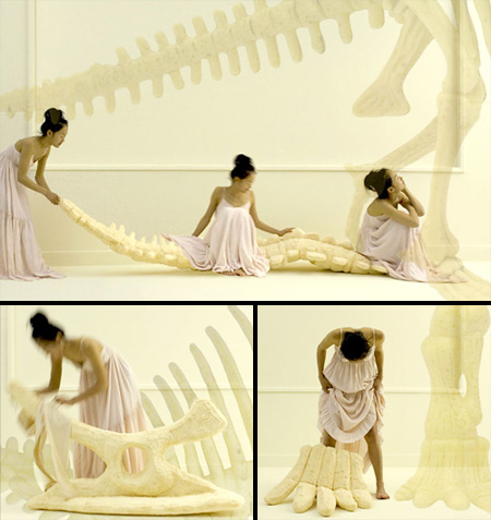 Dinosaur Bones Pillows