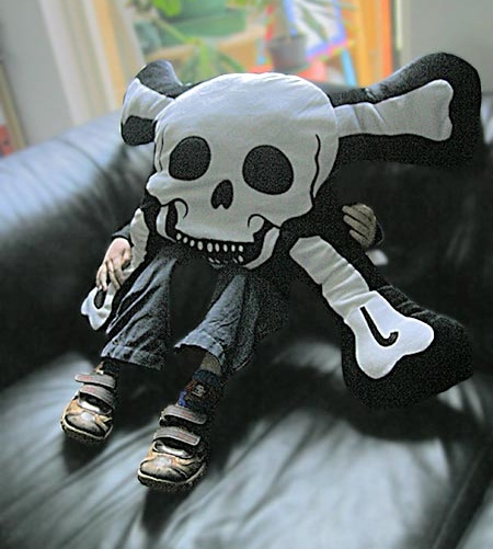 Pirate Skull Pillow