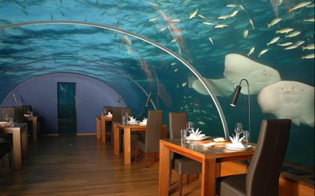 Restaurant in new zealand this unusual restaurant in auckland new