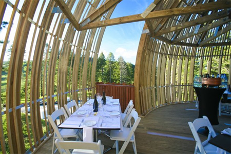 Tree house Restaurant in New Zealand