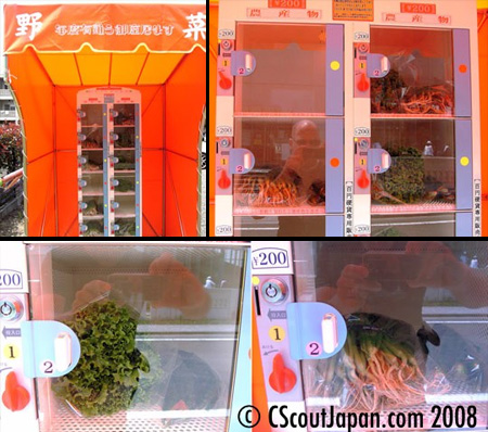 Vegetables Vending Machine