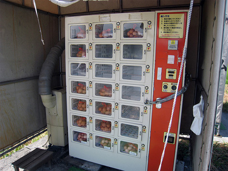 Eggs Vending Machine