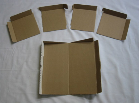 Innovative Pizza Box Plates