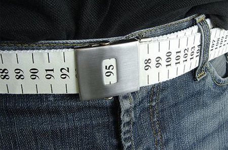 Weight Watch Belt