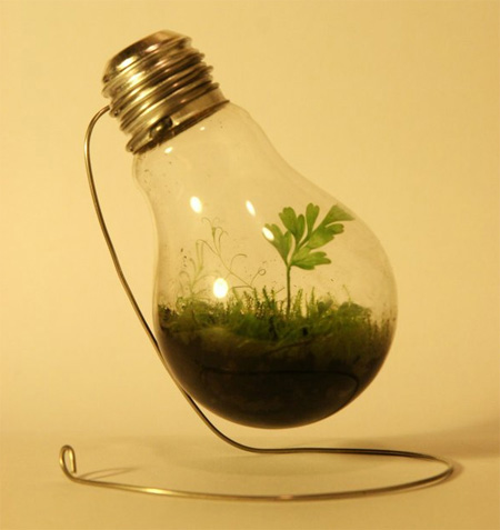 Light Bulb Plant Pot