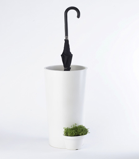 Umbrella Plant Pot