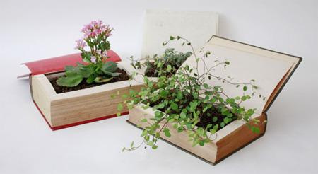 Book Plant Pot