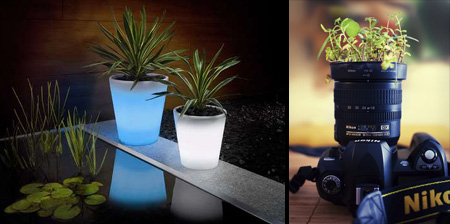 Modern and Creative Plant Pot Designs