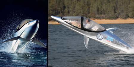 Dolphin Inspired Personal Submarines