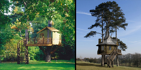 Beautiful Amazon Tree Houses